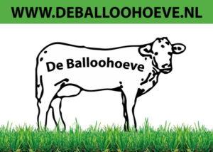 De Balloohoeve